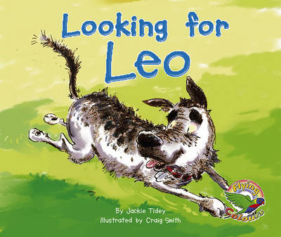 Looking for Leo