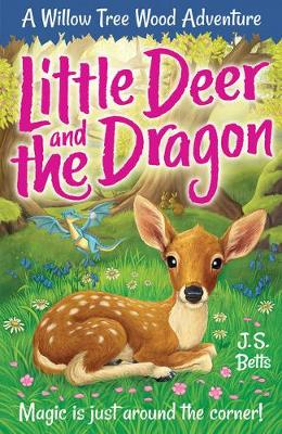 Willow Tree Wood Book 2 - Little Deer and the Dragon