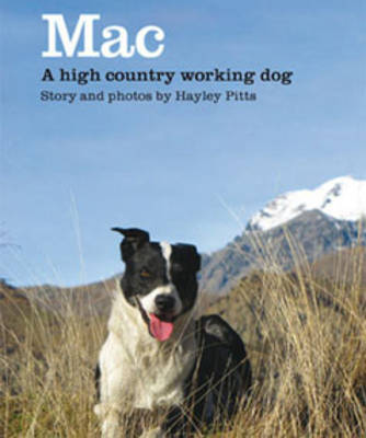 Mac: A High Country Working Dog