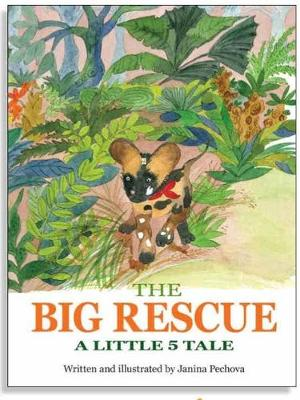 The Big Rescue: A Little 5 Tale