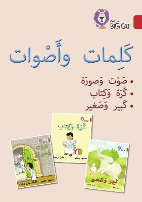 Words and Sounds Big Book: Level 2 (Kg)