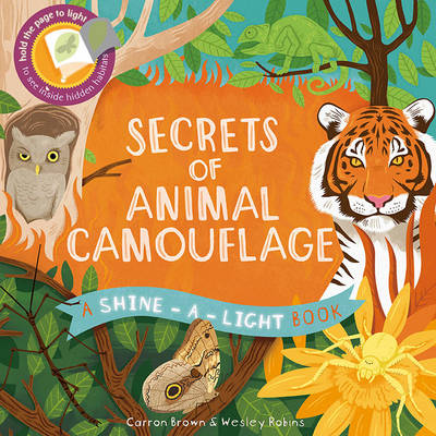 Shine a Light: Secrets of Animal Camouflage