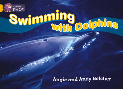 Swimming with Dolphins Workbook