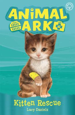 Animal Ark, New 1: Kitten Rescue: Book 1