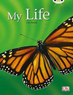 Bug Club Non-fiction Yellow C/1C My Life 6-pack