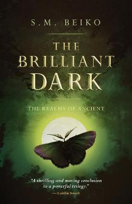 The Brilliant Dark: The Realms of Ancient, Book 3