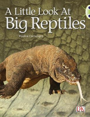 BC NF Blue (KS1) B/1B A Little Look at Big Reptiles