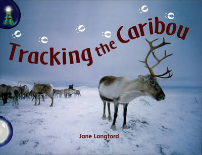Tracking the Caribou (Pack of 6)