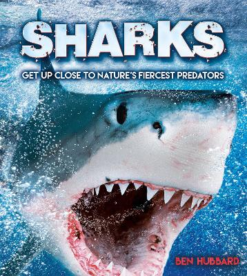 Sharks: Get Up Close to Nature's Fiercest Predators