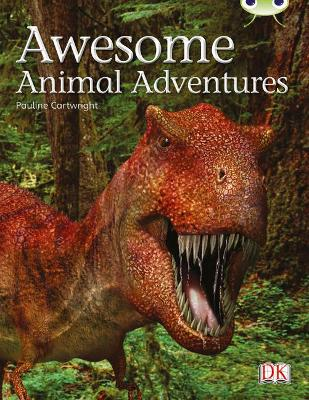 BC NF Lime A/3C Awesome Animal Adventures