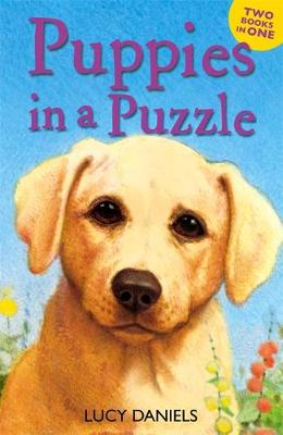 Animal Ark: Puppies in a Puzzle: Dalmatian in the Dales & Labrador on the Lawn