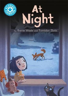 Reading Champion: At Night: Independent Reading Blue 4