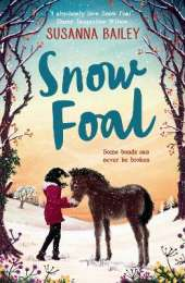 Snow Foal - the perfect Christmas book for children