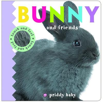 Bunny & Friends: Priddy Touch & Feel