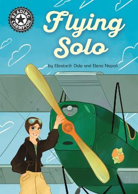 Reading Champion: Flying Solo: Independent Reading 18