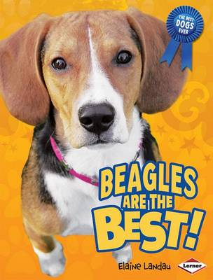 Beagles Are the Best!
