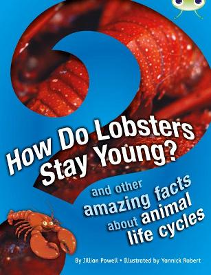 BC NF Brown A/3C How Do Lobsters Stay Young?