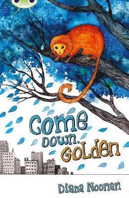 Bug Club Independent Fiction Year 3 Brown A Come Down, Golden