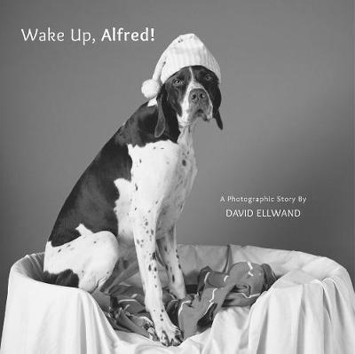 Wake Up, Alfred!: A Photographic Story