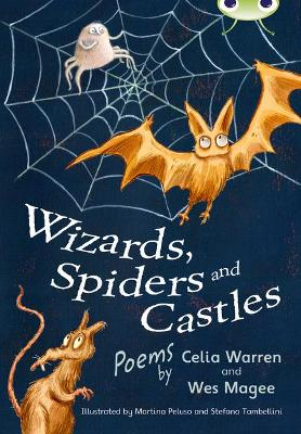 Wizards, Spiders and Castles