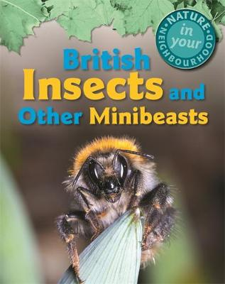 Nature in Your Neighbourhood: British Insects and other Minibeasts