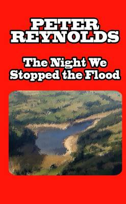 The Night We Stopped the Flood