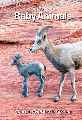 Our Arizona: Baby Animals