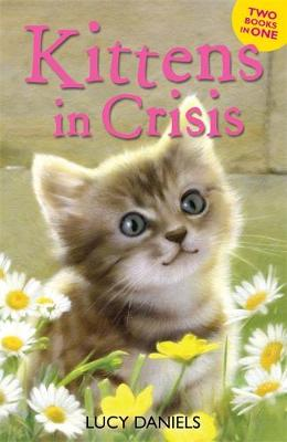 Animal Ark: Kittens in Crisis: Tabby in the Tub & Cats in the Caravan
