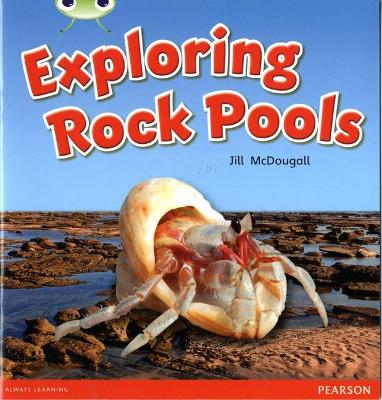 Bug Club Non-fiction Green C Exploring Rock Pools