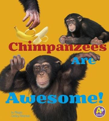 Awesome African Animals: Chimpanzees