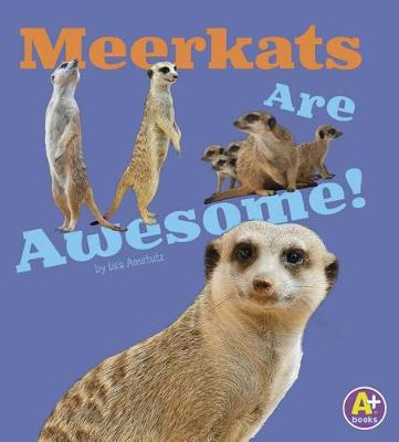 Awesome African Animals: Meerkats