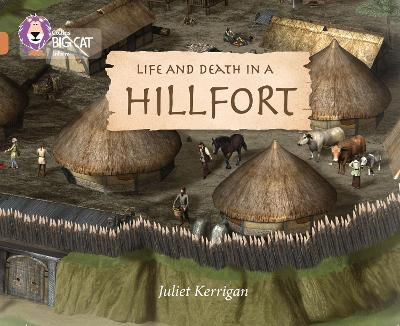 Life and Death in an Iron Age Hill Fort: Band 12/Copper
