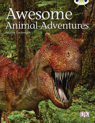 Bug Club Non-fiction Lime A/3C Awesome Animal Adventures 6-pack