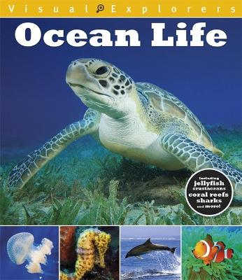Visual Explorers: Ocean Life