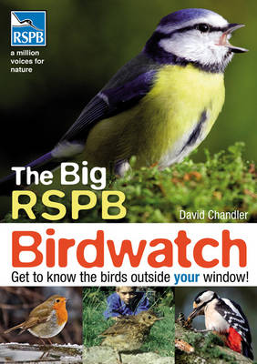 The Big RSPB Birdwatch