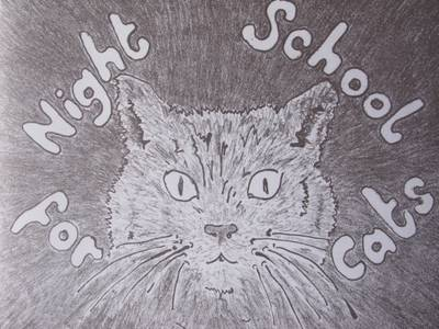 Night School for Cats