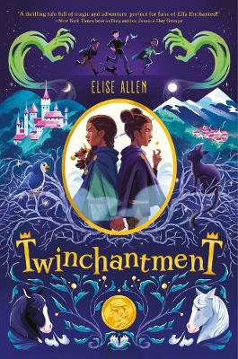 Twinchantment (twinchantment Series #1)