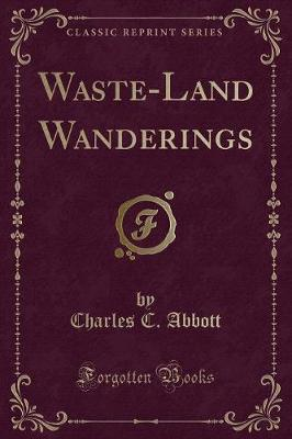 Waste-Land Wanderings (Classic Reprint)