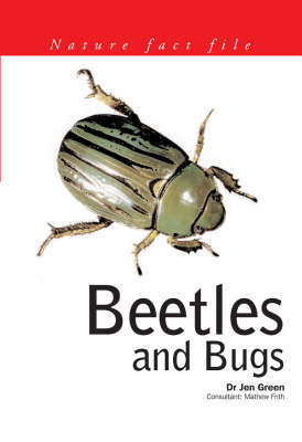 Beetles and Bugs