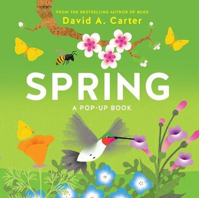 Spring: A Pop-up Book