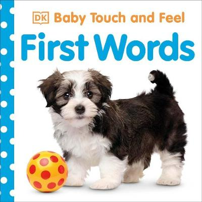Baby Touch and Feel First Words