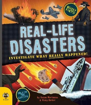 Real-life Disasters: Investigate What Really Happened!