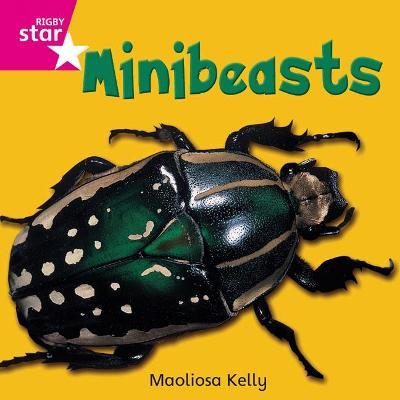 Rigby Star Independent Pink Reader 2 Minibeasts