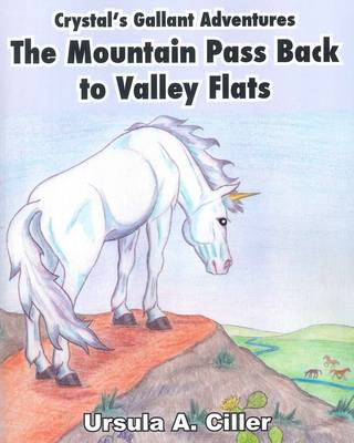 Crystal's Gallant Adventures, the Mountain Pass Back to Valley Flats