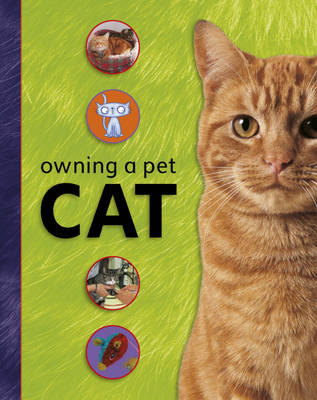 Owning A Pet: Cat